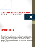 Anatomia Radiologica Normal