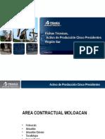 Fichas Técnicas AP5P.PPTX