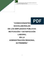 005_Robina_Condicionantes.pdf