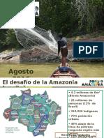 Fondo Amazonia, BNDES