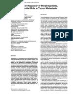 Yang & Mani Cell-2004.pdf
