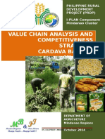 Cardava Value Chain Analysis.doc