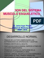 6. Musculoesquelético