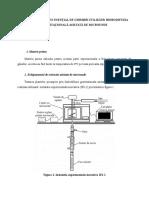Extractia Uleiului Esential de Ghimbir Utilizand Hidrodifuzia Gravitationala Asistata de Microunde_alexandra (2)
