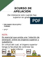 RECURSO-DE-APELACIÓN-YURIKO.pptx