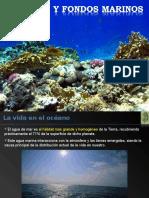 04_-la-vida-en-el-mar1.ppt