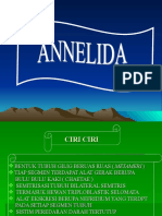 Annelida ( Power Point )