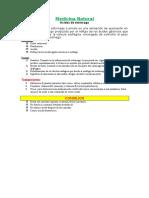Práctica 3 Viñetas y Numeración