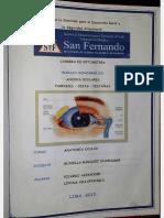 Anexos Oculares - Editado Por Pabel