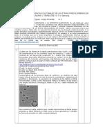 Webquest n.1. (Evidencias Culturales de Las Etapas Precolombinas en Panamá) II Trimestre- III y IV Semana