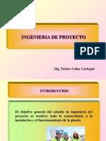 Ingenieria de Proyecto.pdf