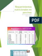Lineas de Nutrición en Porcinos 2