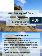 8. Weathering & Soils