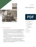 chan cap 19.pdf