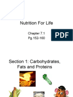 nutrition - packet 2