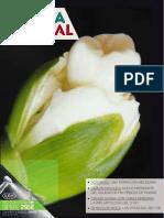 gacetadental_259.pdf