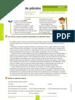 Estructura de Párrafos