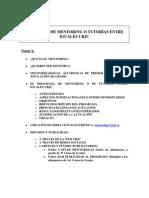 Programa Mentoring Urjc