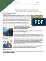 Alto Custo Para Plantação de Oliveiras Desanima Pequenos Agricultores - Economia - Estado de Minas