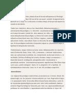 PARADIGMA CONSTRUCTIVISTA.pptm