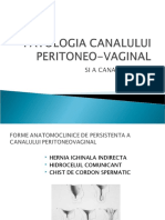 PATOLOGIA CANALULUI PERITONEOVAGINAL