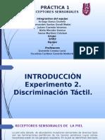 Experimento 2 discriminacion Tactil,