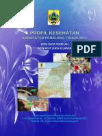 Profil kesehatan Kab_Pemalang_2012.pdf