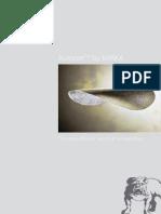 Mirka autonet[1].pdf