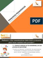 Principios Pedagógicos.pdf