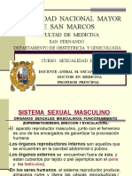 CLASE 1 Sexualidad Sistema Sex. Masc. Fem