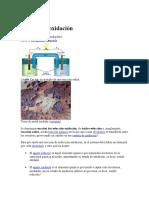 CLASE DE OXIDACION REDUCCION.docx