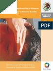 Manual para la formacion de primeros Respondientes en Primeros Auxilios.pdf