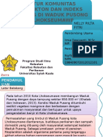ppt nelly