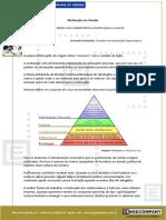 MOTIVAÇÃO EM VENDAS revisado - autoral Fernando Guimarães.pdf
