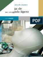 Gonzalo Calcedo - La Carga de La Brigada Ligera