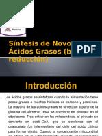 Sintesis de Ac Grasos