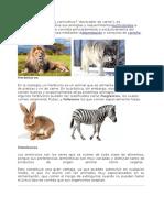 animales segun su alimentacion.docx