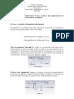 Cogeneracion- Termodinamica Li
