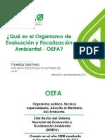 1. PPT Qué Es El OEFA Final