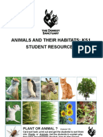 Animals and Their Habitats Ks1 Worksheets