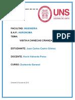 INFORME DE CUYES.docx