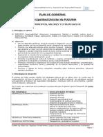 plan de gobierno municipalidad de puquina