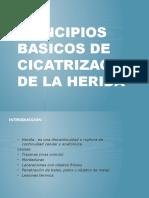 Principios Basicos de Cicatrizacion de La Herida