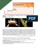 Espanhol (2).doc