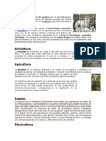 Cunicultura, Avicultura, Apicultura, Equino, Piscicultura, Acuicultura, Ovino, Caprino, Etc.
