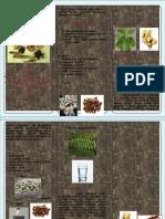 Leaflet Ramuan Rematik Nirawati