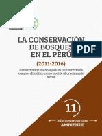 11 La Conservación de Bosques en El Perú