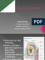 ENFERMEDADES_DE_LAS_VIAS_LAGRIMALES.ppt