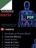 Urinário Bruno Educa Final (1)