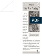 6_fruit_tree_planting.pdf